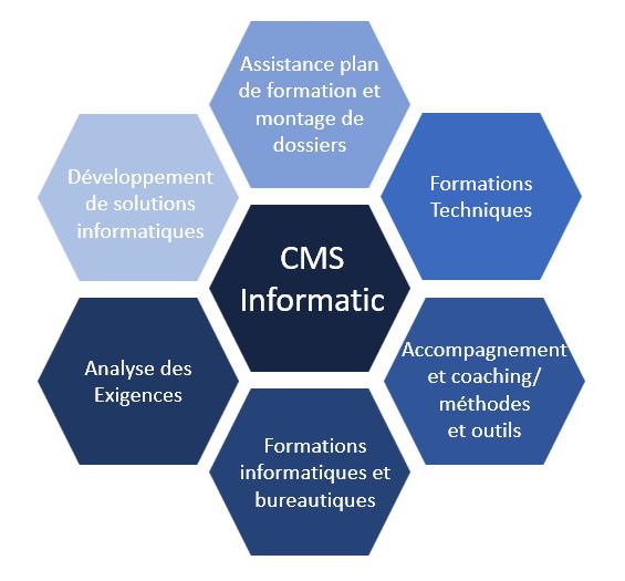 Domaines d'activité CMS Informatic